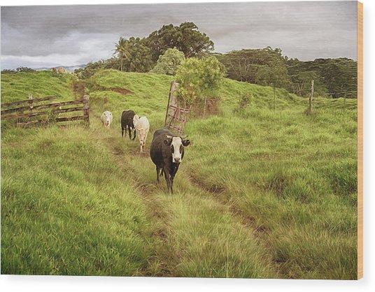Upcountry Ranch Wood Print