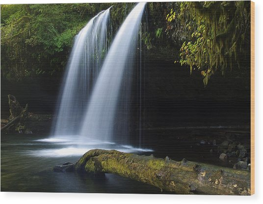 Upper Butte Creek Falls Wood Print