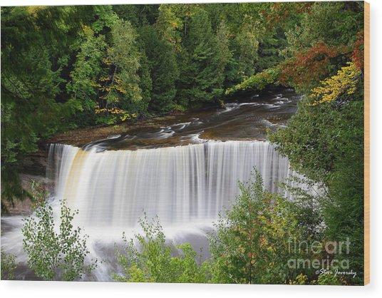 Upper Tahquamenon Falls Wood Print