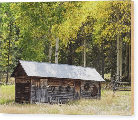 Uptop A Colorado Ghost Town Wood Print