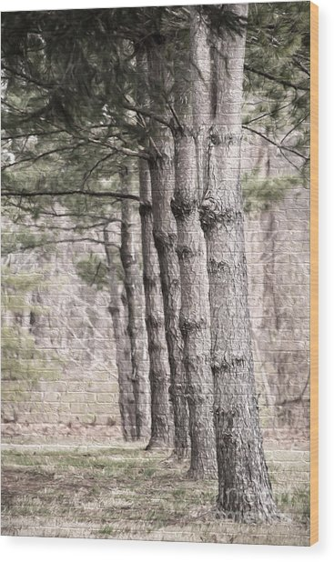 Urban Forestry Wood Print