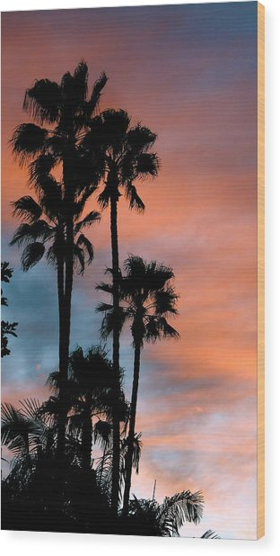 Urban Palms Wood Print by Peter Breaux