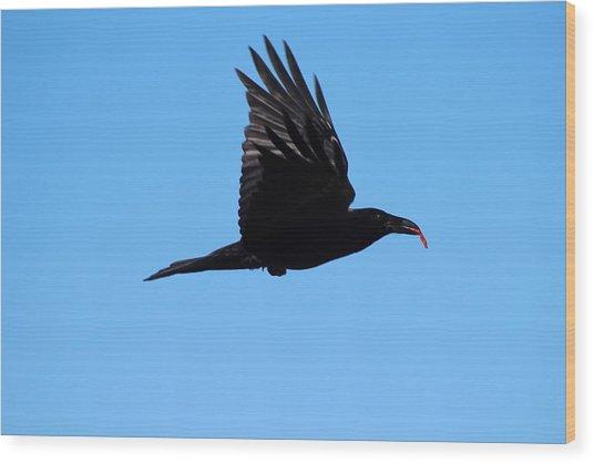 Urban Raven Wood Print