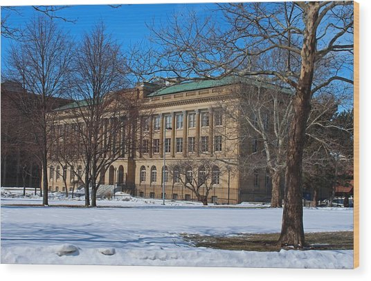 Us Court House And Custom House Wood Print