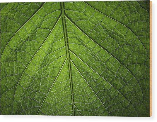 Usbg Leaf One Wood Print