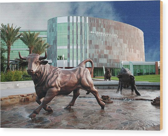 Usf Tampa Wood Print by Francesco Roncone