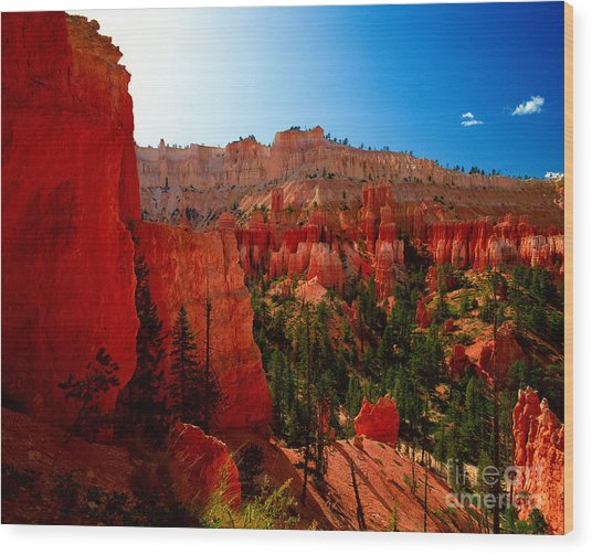 Utah - Navajo Loop Wood Print