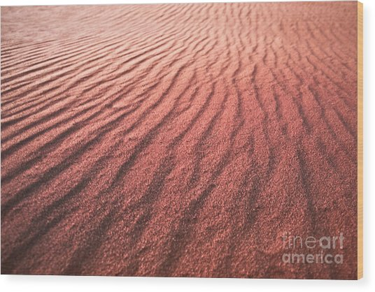 Utah Coral Pink Sand Dunes Wood Print by Ryan Kelly
