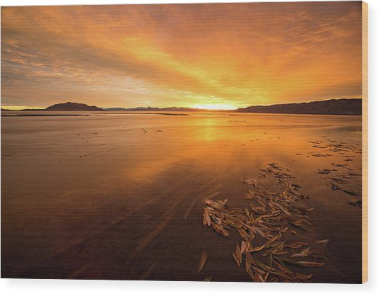Wood Print featuring the photograph Utah Lake Sunset by Wesley Aston