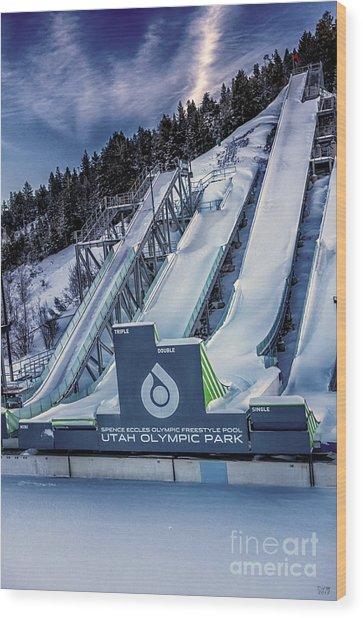 Utah Olympic Park Wood Print