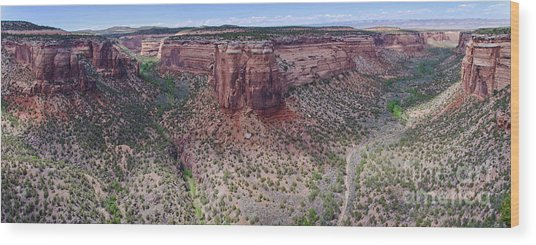 Ute Canyon Wood Print