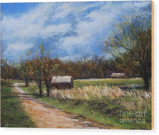 Valley Forge Summer Wood Print by Joyce A Guariglia