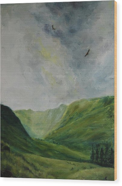 Valley Of Eagles Wood Print
