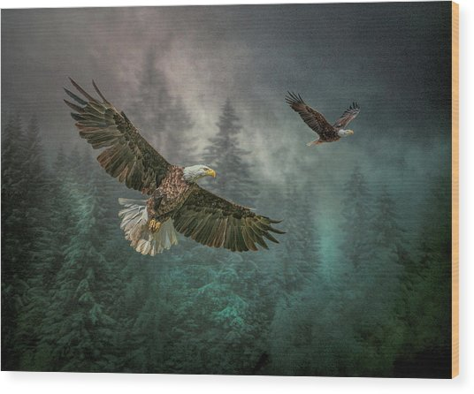 Valley Of The Eagles. Wood Print