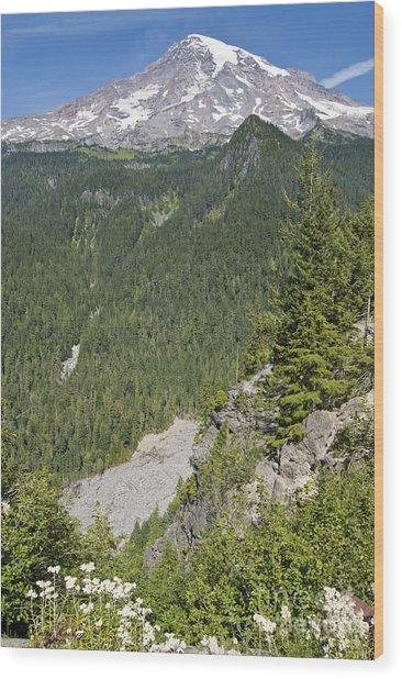 Valley View Of Mt. Rainier Wood Print by Larry Keahey