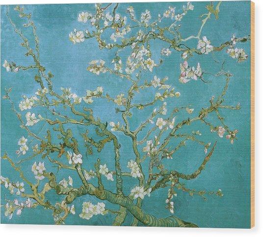 Van Gogh Blossoming Almond Tree Wood Print by Vincent Van Gogh