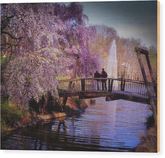 Van Gogh Bridge - Reston, Virginia Wood Print