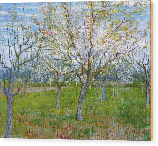 Van Gogh The Pink Orchard Wood Print by Vincent Van Gogh