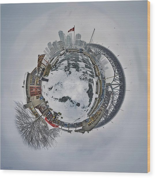 Vancouver Winter Planet Wood Print by Mauricio Ricaldi