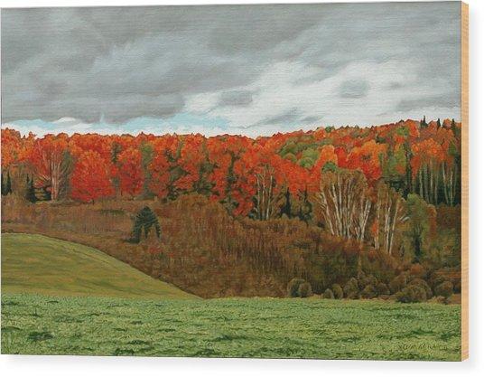 Vardy Settlement Colour Wood Print by Allan OMarra