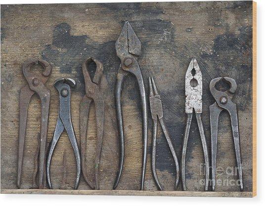 Various Forceps Wood Print