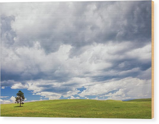 Wood Print featuring the photograph Vast Open Spaces by Rick Furmanek