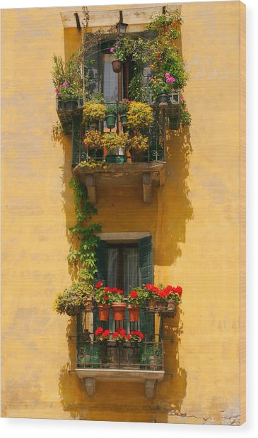 Venice Balcony Wood Print by Carl Jackson