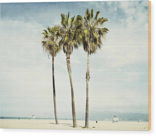 Venice Palms  Wood Print