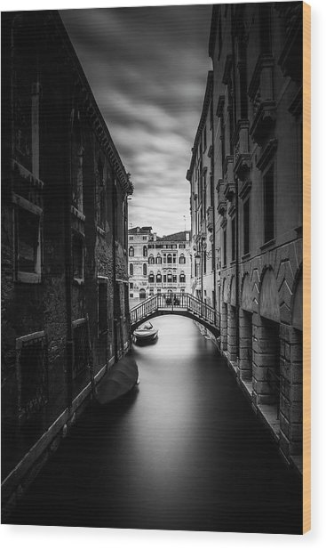 Venice Residential Canal Wood Print by Andrew Soundarajan