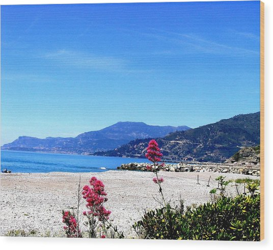 Wood Print featuring the photograph Ventimiglia Italia by Michelle Dallocchio