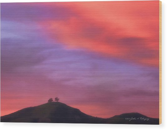 Ventura Ca Two Trees At Sunset Wood Print
