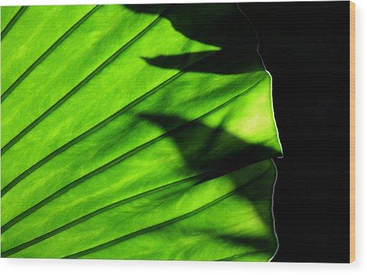 Verdant Wood Print