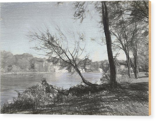 Vergennes Falls Digital Charcoal Wood Print