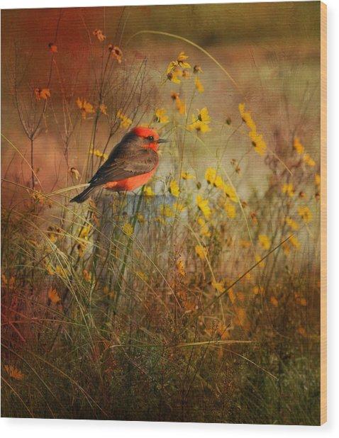 Vermilion Flycatcher At St. Marks Wood Print