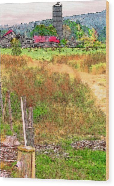 Vermont Farmland 3 Wood Print by Steve Ohlsen