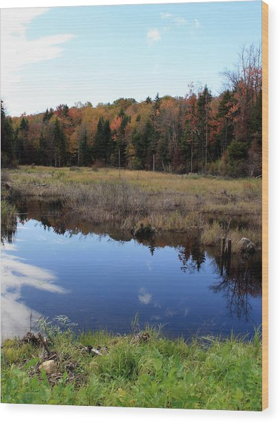 Vermont Reflections 1 Wood Print by George Jones