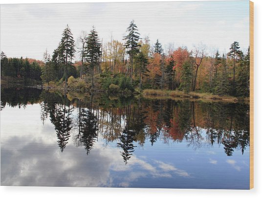 Vermont Reflections 2 Wood Print by George Jones