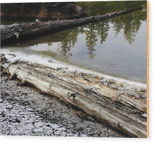 Vernal Pond Xi Wood Print by D Kadah Tanaka