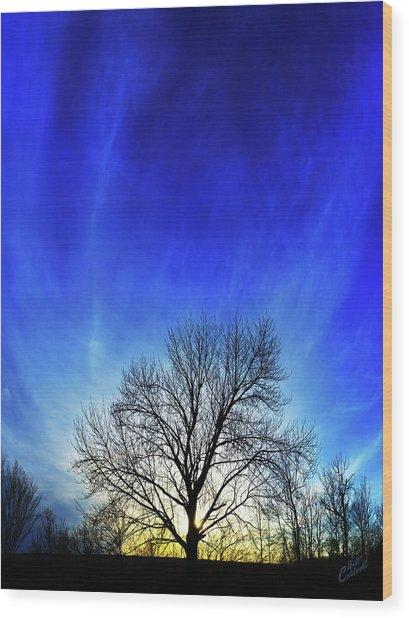 Vernal Sunset Wood Print