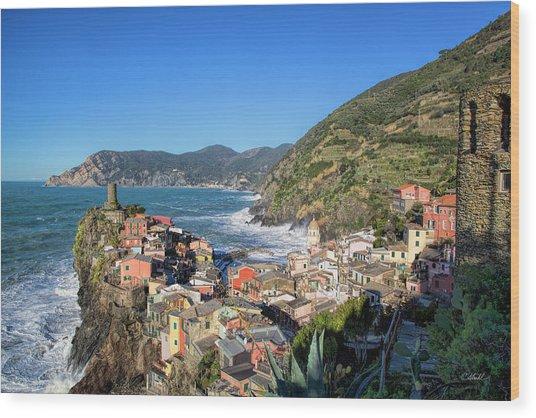 Vernazza In Cinque Terre Wood Print