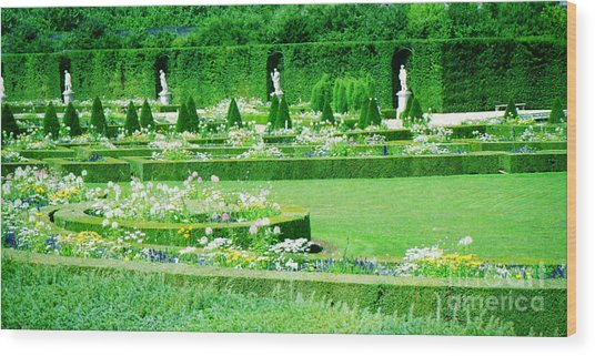 Versailles Pathways Wood Print