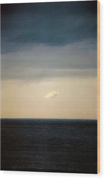 Vertical Number 20 Wood Print by Sandra Gottlieb