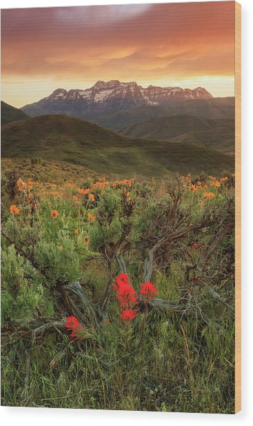 Vertical Timp With Wildflowers Wood Print