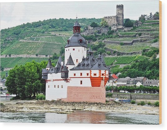 Vertical Vineyards And Buildings On The Rhine Wood Print