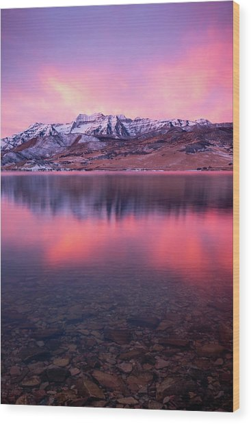 Vertical Winter Timp Reflection. Wood Print