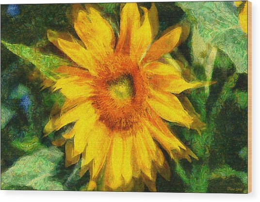 Very Wild Sunflower Wood Print