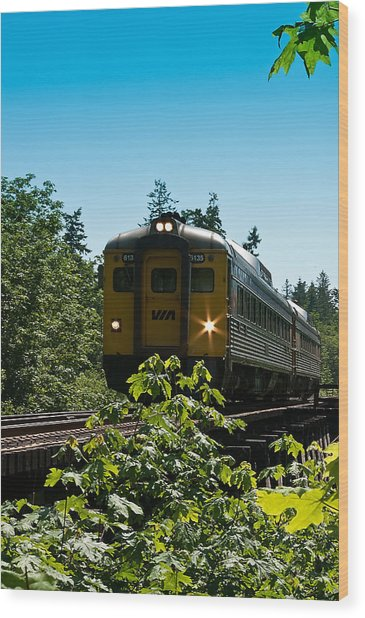Via Rail - 6135 Wood Print by R J Ruppenthal