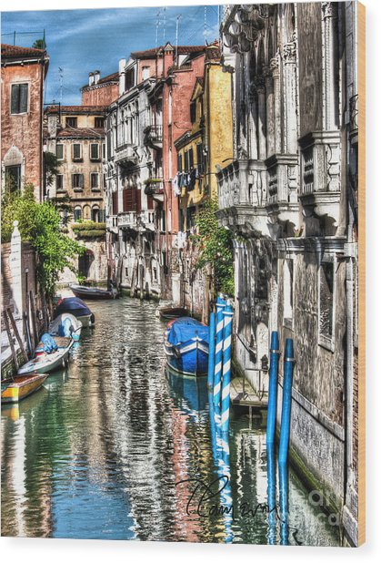 Viale Di Venezia Wood Print