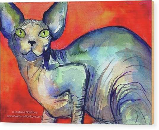 Vibrant Watercolor Sphynx Painting By Wood Print