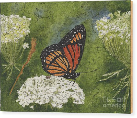Viceroy Butterfly On Queen Anne's Lace Watercolor Batik Wood Print